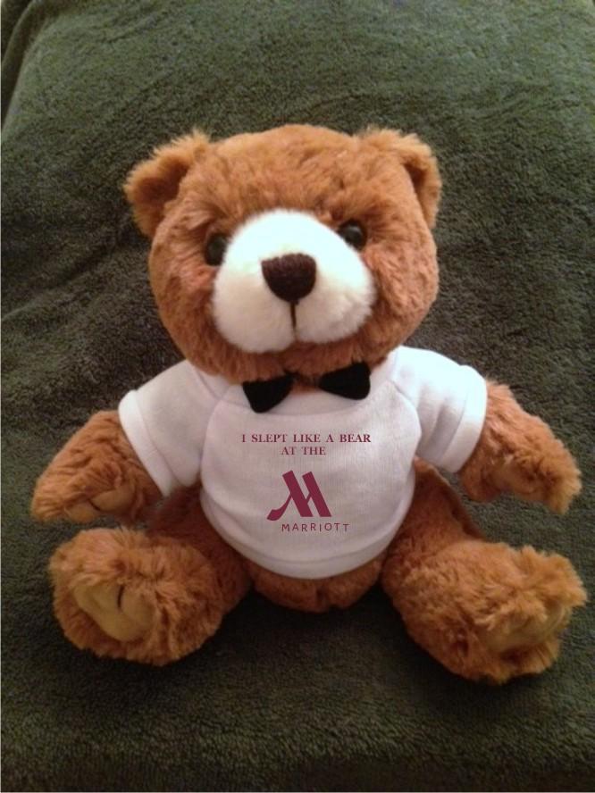 "Bears, 9"" Tall.  Extra-Cuddly!"