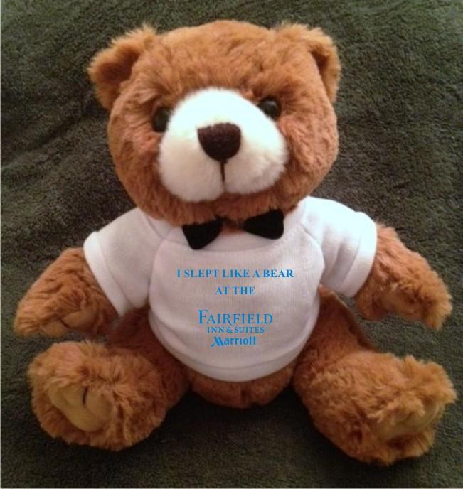 "Teddy Bears. ""I SLEPT LIKE A BEAR AT THE FAIRFIELD INN & SUITES"" - 9"" Tall.  Makes a unique gift!"