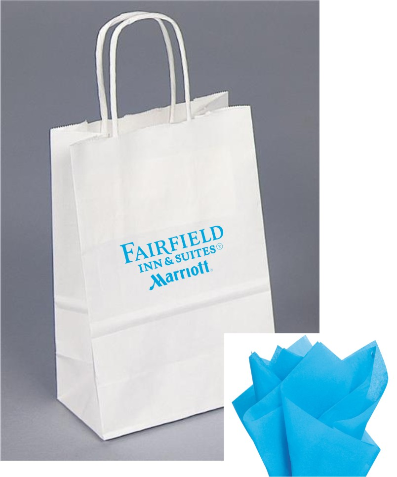 Paper Gift Bag - Blue tissue included - Rope Handle