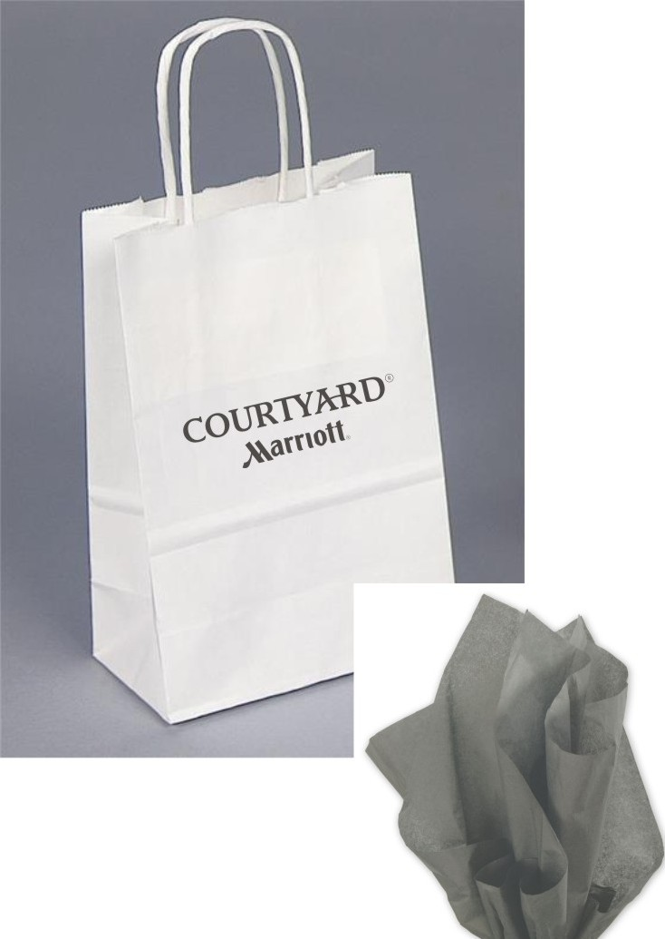 Paper Gift Bags - Robe Handle - Grey Tissue included.