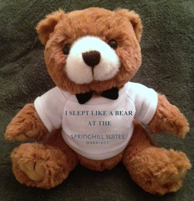 "Teddy Bears. ""I SLEPT LIKE A BEAR AT THE SPRINGHILL SUITES"" - 9"" Tall.  Makes a unique gift!"