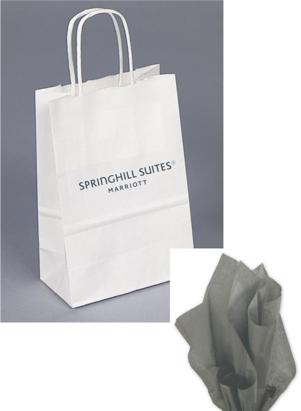 Paper Gift Bags - Gray tissued included - Rope Handle