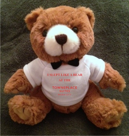 """Teddy Bears. """"I SLEPT LIKE A BEAR AT THE TOWNEPLACE SUITES"""" - 9"""" Tall.  Makes a unique gift!"""