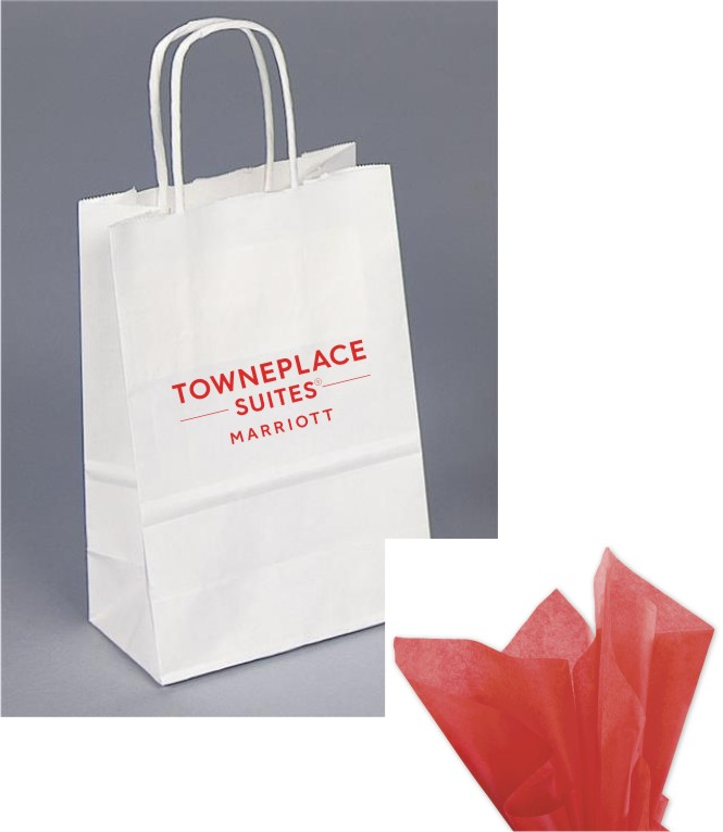 Paper Gift Bag - with Red Tissue - Rope handle.